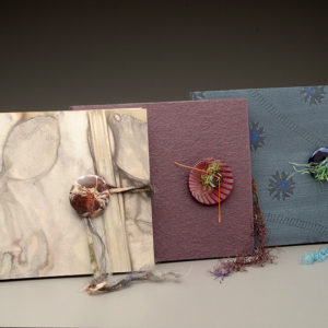 Fold-Out Accordion Book